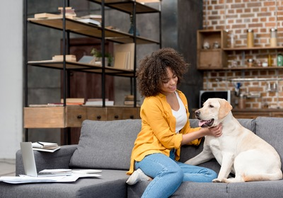 The Pet-Friendly Amenities You Should Have in Your Asheville Home