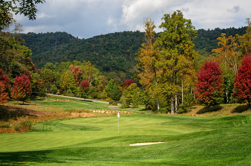Discover Asheville North Carolina Homes for Sale Near Golf Courses