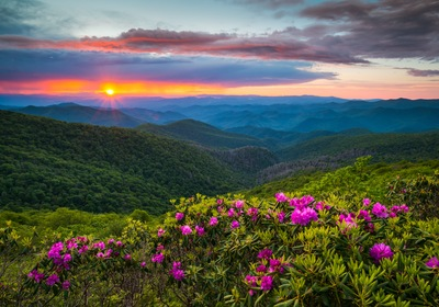 Discover A Summer Oasis With Homes For Sale In Asheville NC